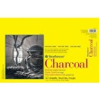 "Strathmore ST330-111 - 300 Series 11"" x 17"" White Charcoal Pad - Glue Bound ES8443"