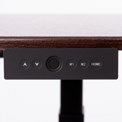 Luxor STANDE-60 - 60 Electric Standing Desk ES6666